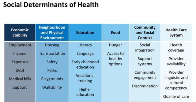 Social Determinants of Health (SDOH) Chart