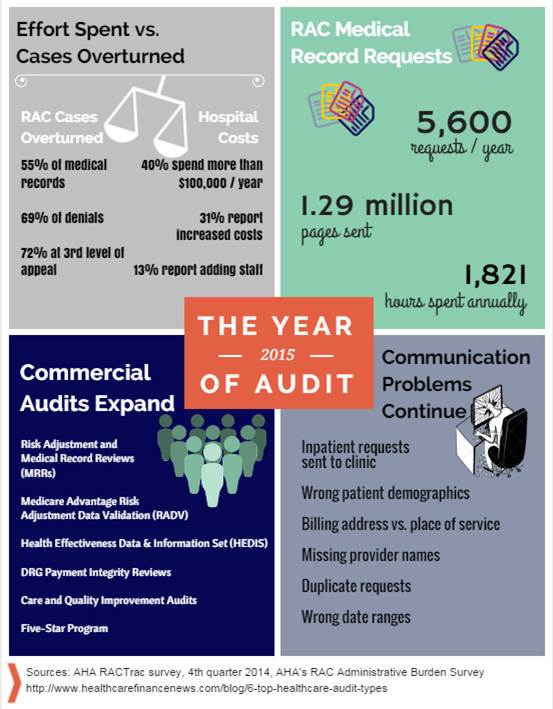 The Year of Audits Infographic.Rev1.6.11.15